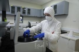 الصحة الفلسطينية: تسجيل 12 حالة وفاة و2083 إصابة جديدة بفيروس كورونا في الضفة و غزة