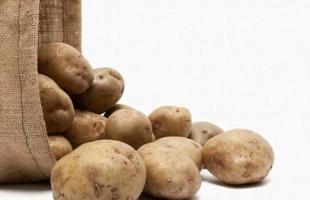 """زراعة طوباس تُصدر بيانًا توضيحيًا يتعلق بشاحنة """"البطاطا"""""""
