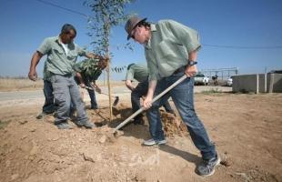بالصور.. قناة عبرية: زراعة مئات الأشجار قرب السياج الفاصل للحماية من صواريخ غزة
