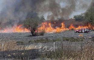 """اندلاع حريق في """"شاعر هنغف""""بفعل بالونات حارقة أطلقت من غزة"""