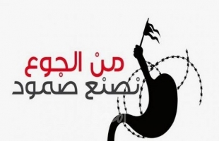 (13) أسيراً يواصلون اضرابهم عن الطعام داخل سجون الاحتلال