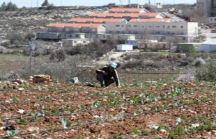 سلطات الاحتلال تصادق على إنشاء مئات الوحدات الاستيطانية شرق بيت لحم