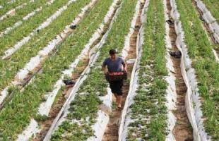 سلطات الاحتلال تستولي على جرار زراعي وتطرد مزارعًا من أرضه شرق بيت لحم
