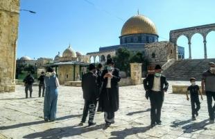 القدس: 115 مستوطنا يقتحمون المسجد الأقصى