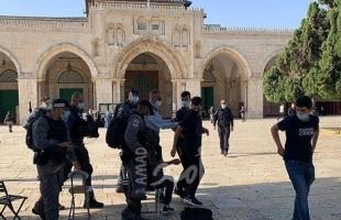 الأردن يدين استمرار الانتهاكات الإسرائيلية في المسجد الأقصى