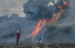 محدث.. اشتعال النيران بدفيئات زراعية في بلدات إسرائيلية بفعل بالونات غزة