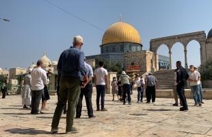 """مجلس الأوقاف يحذر من انتهاكات الاحتلال الإسرائيلي بحق """"الأقصى"""""""