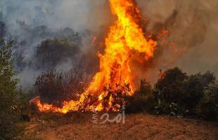 """إعلام عبري: اندلاع حريقين في """"إشكول"""" يشتبه بأنهما بفعل بالونات حارقة أطلقت من غزة"""
