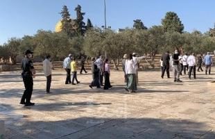 """مرصد الأزهر: 2020 من أخطر الأعوام على """"الأقصى"""" تحت وطأة جيش الاحتلال"""