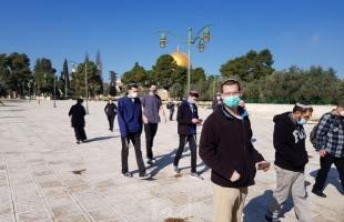 القدس: (50) مستوطنًا يقتحمون ساحات المسجد الأقصى