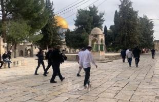 مستوطنون يقتحمون باحات المسجد الأقصى بحماية شرطة الاحتلال