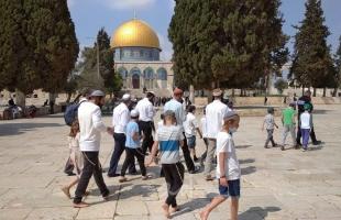 """القدس: (53) مستوطناً يقتحمون ساحات """"المسجد الأقصى"""" بحراسة مشددة"""