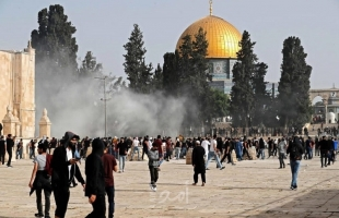 """تنديد عربي ودولي بالهجمة الشرسة التي شنتها شرطة الاحتلال على المصلين في """"المسجد الأقصى"""""""