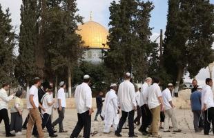 """القدس: مستوطنون يقتحمون """"الأقصى"""" بحراسةٍ مشددة"""