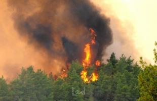 السلطات الفرنسية تجلي سكان جنوب شرقي البلاد مع اندلاع حرائق