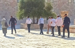 """القدس: (73) مستوطنًا يقتحمون """"المسجد الأقصى"""""""