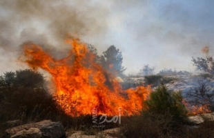 إعلام عبري: حريق كبير في كريات شمونة بالقرب من الحدود اللبنانية - فيديو