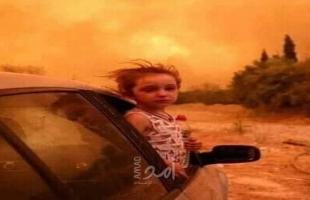 الجزائر تعلن حصيلة حرائق الغابات خلال الـ24 ساعة الماضية