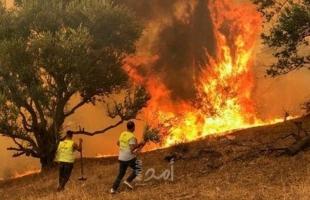 الجزائر تعلن إخماد حرائق ولاية تيزى وزو