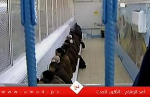 """نادي الأسير: أسرى """"الجهاد"""" يشرعون بالاضراب عن الطعام داخل سجون الاحتلال"""
