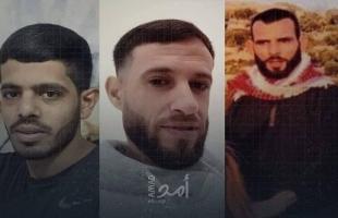 الخارجية الفلسطينية تٌدين إعدام جيش الاحتلال لـ 5 فلسطينيين