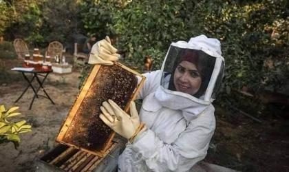 """""""شابة فلسطينية"""" تتحدى عنجهية قوات الاحتلال وتنفذ """"مشروع النحل"""" قرب السياج"""