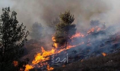 """اندلاع حرائق في """"فجة وأشكول"""" بفعل بالونات حارقة أطلقت من غزة"""