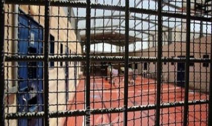 الأشقر: سلطات الاحتلال لا تزال تتختطف 9 نواب