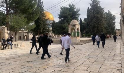 قوات الاحتلال تقتحم المسجد الأقصى وتعتقل فتاة من باحاته