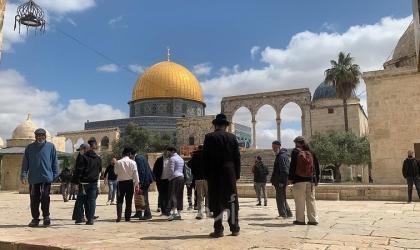 """القدس: (87) مستوطناً يقتحمون ساحات """"المسجد الأقصى"""""""