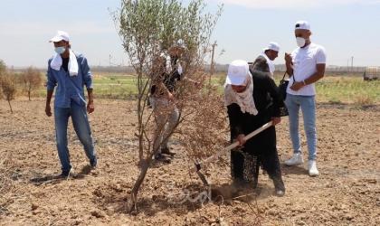 """غزة: الإغاثة الزراعية تطلق حملة """"ايد بإيد بندعم صمودنا وبنعزز وجودنا"""""""