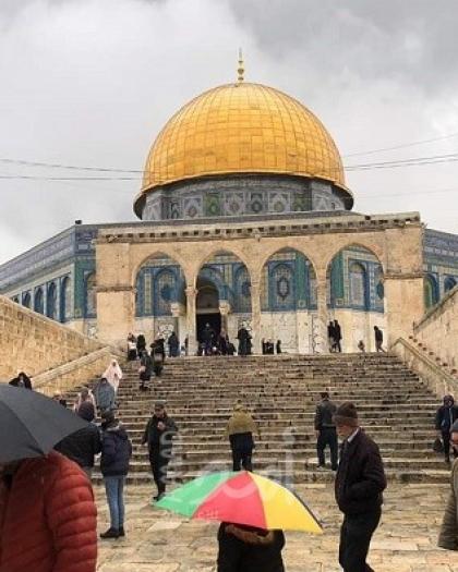 الكسواني: فتح المسجد الأقصى أمام المصلين في شهر رمضان