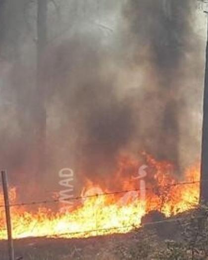إعلام عبري:  أكثر من (70) حريقاً أشعلها فلسطينيون في مستوطنات الضفة