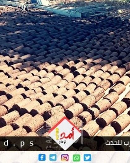 مخلفات الزيتون مصدر للطاقة في فلسطين