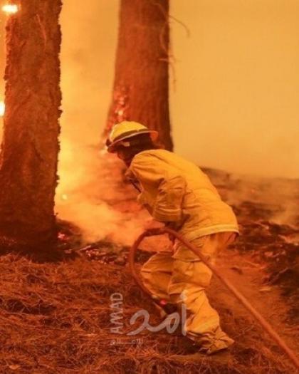 حريق جديد خارج عن السيطرة في غابة شمال كاليفورنيا