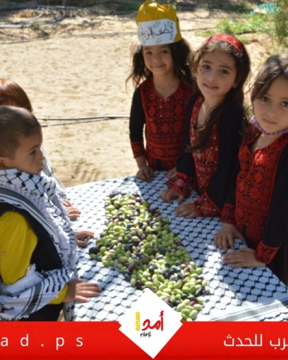 شاهد - أطفال يشاركون الفلاح الفلسطيني قطف ثمار الزيتون