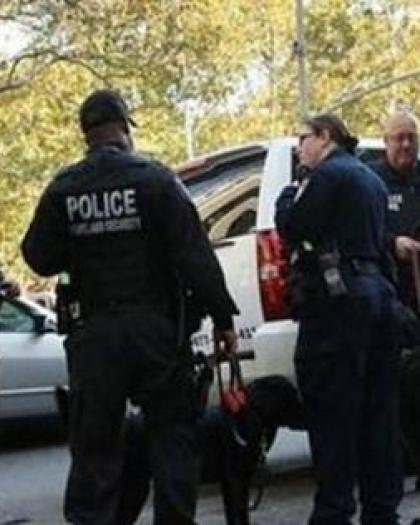 نيويورك: الشرطة تطلق الرصاص على مسلّح هاجم حفلاً أمام كاتدرائية - فيديو
